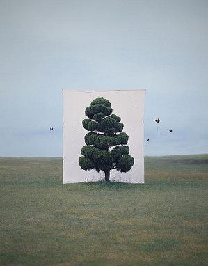 fakebook-tree_500.jpg